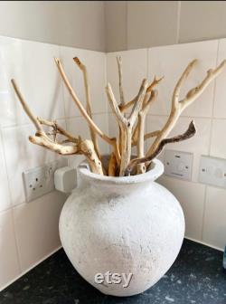 9 Long Curved Driftwood Pieces - 42 à 77 cm (16,5 à 30.3 ) - Branches en bois flotté pour vase décor, mariages, lampes de sol diy, terrariums