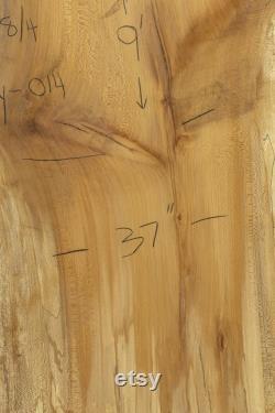 9 pieds Spalted Sycamore Live Edge Wood Slab. 9 Foot Sycamore table à manger. Haut de table de sycamore de bord en direct
