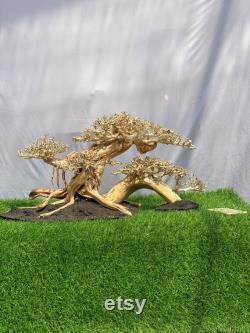 Aquarium Driftwood Bonsai Large, Aquarium driftwood bonsaï, bonsaï de dérive pour la décoration d aquarium, Arbre drift drift pour aquarium