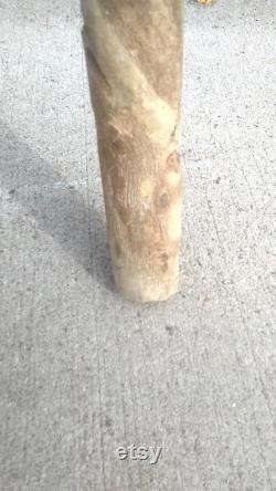 Bâton de marche de fond tordu de bois naturel