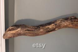 Branche de bois flotté Environ 66