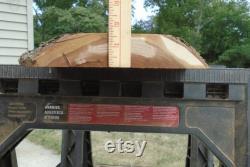 Cherry Live Edge Lumber Slab Kiln Séché pièce maîtresse Décor Art Project 41 Long 11 Max. Largeur 1 5 8 Épais aplati poncé