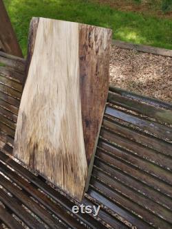 Dalle d érable Ambrosia (bord vivant) Dalle épaisse (spalted)
