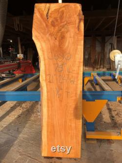 Dalles géantes live edge sur 8' L en noyer noir, érable spalted, érable ambrosia, poplar arc-en-ciel, hickory et d autres types de bois