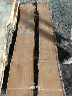 Dalles italiennes Nocino Stained Live Edge Jusqu à 10 pieds de long et 20 Large