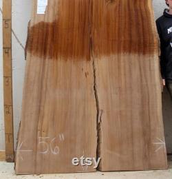 Énorme orme Conférence table naturelle Live RAW bord dine table meubles sur mesure rustique en bois grand bois 4659x2