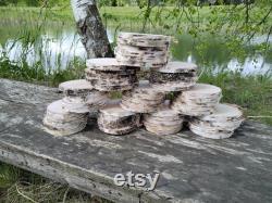 Ensemble de 1000 tranches de bois de bouleau
