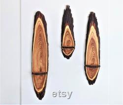 Étagères murales en bois Live Edge, Scnces 30 50 Chinaberry, Lilas persan Ensemble de 3