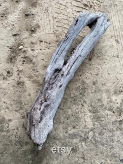 Grand décor de bois flotté lourd