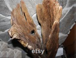 Grande sculpture de tronc d'arbre de Driftwood, Driftwood reclaimed, pièce artistique sculpturale de dérivation de driftwood, affichage d'événement Driftwood