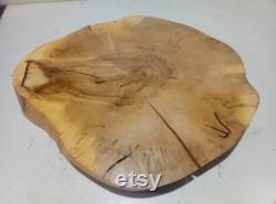 Grande tranche d arbre XXL ,bois,bois, decore, tranche d érable, avec grand coureur d astaude