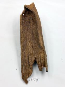 HAUTE QUALITÉ VIEUX WILD FLOREST Agarwood malino malinau Kalimantan 340,85 grammes . 340,850,85