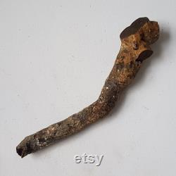 Natural Genuine Black Coral Raw Branch Giant Rare 280 grammes