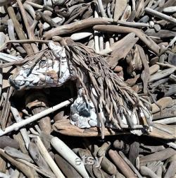 Pièces de bois flotté 200 6 -12 assortis, bois flotté océanique de Californie du Nord, Bois flotté naturel, Bois flotté de l océan Pacifique, Haute qualité