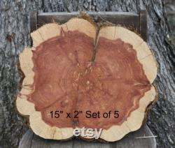 Rustic Wood Centerpieces, 15 x 2 d'épaisseur, Ensemble de 5, décor de mariage rustique, boisé, boisé, extérieur, grange, Texas, mariage du Sud