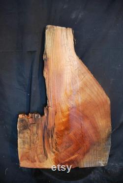 Siberian Elm Live Edge Wood Slab 26 LIVRAISON GRATUITE