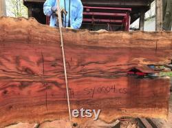 Table à manger en dalle de bois Sycamore 9 pieds