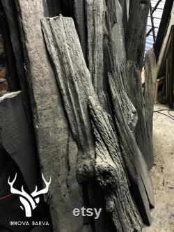 Une statue unique de chêne noir -Bogwood Un grand cadeau pour votre maison. une pièce exclusive d il y a 4000 ans