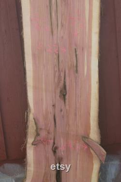 X grande dalle de cèdre rouge rare 72 pouces
