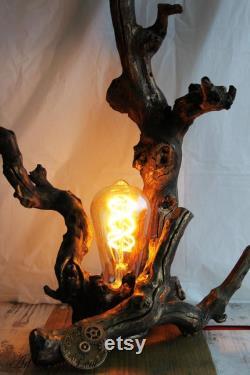 lampe vintage Driftwood Grande lampe en bois naturel Driftwood Lampe BasTable Driftwood Sculpture, Driftwood DecorArt, lampe intérieure