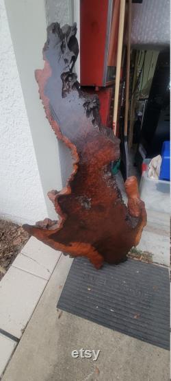 vintage Antique Live Edge CYPRESS Ornate Rustic Log Tree Slab